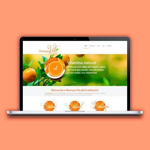 Proyectos realizados naranjasvita