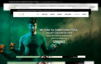 Proyectos Realizados pulso-web